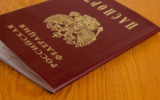 Способы получения и приобретения гражданства РФ в 2020 году