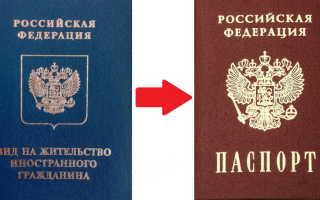 Получение гражданства РФ после оформления вида на жительство в 2020 году