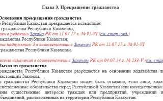 Получение паспорта гражданина Казахстана в 2020 году
