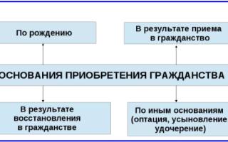 Какие документы нужны для получении гражданства РФ в 2020 году: их полный перечень и особенности подачи