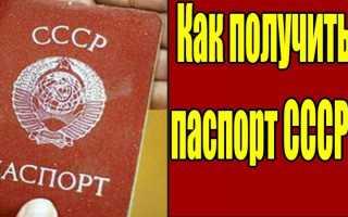 Гражданство РФ гражданам бывшего СССР: как его получить в 2020 году