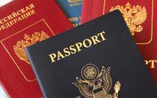 Можно ли иметь двойное гражданство Россия – Германия в 2020 году