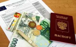 Какие документы нужны для получения и оформления шенгенской визы в 2020 году: перечень и список