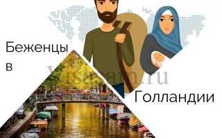 Беженцы в Голландии в 2020 году: как получить политическое убежище и статус беженца в Нидерландах