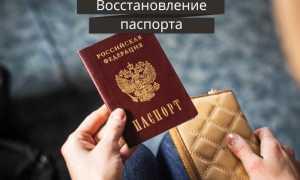 Что делать при утере паспорта Беларуси в 2020 году: размер штрафа