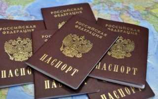Как проверить и узнать готовность гражданства РФ по фамилии онлайн на сайте МВД в 2020 году
