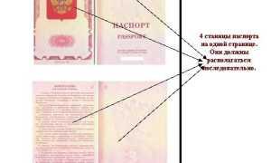 Как сделать копии паспорта для оформления визы в Испанию в 2020 году