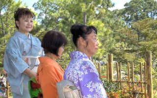 Средняя пенсия в Японии в 2019-2020 годах: возраст выхода и размер выплат
