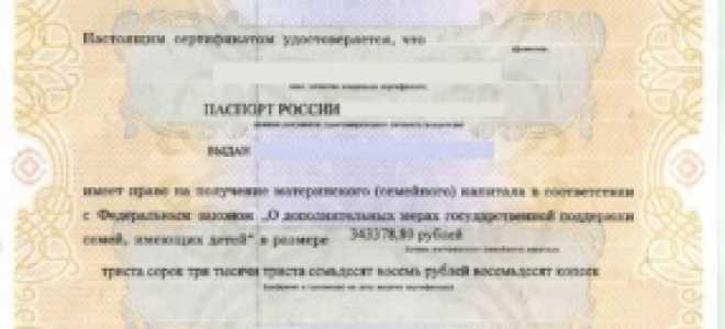 Вкладыш о гражданстве РФ для ребенка, прикладываемый к свидетельству о рождении в 2020 году: как и где получить