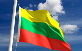 Виза в Литву для ребенка: необходимые документы и образец заполнения анкеты в 2020 году