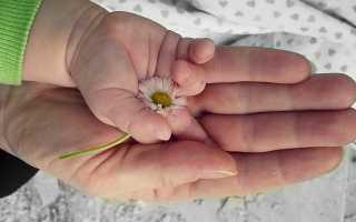 Пособие по рождению и уходу за ребёнком в Казахстане в 2019-2020 годах