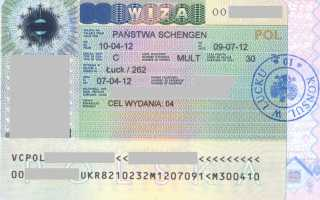 Студенческая виза в Польшу для украинцев, белорусов и россиян в 2020 году: документы для оформления
