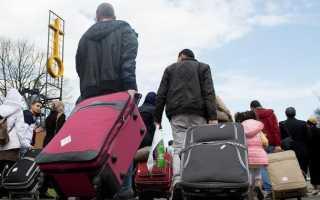 Как получить статус беженца в Германии для украинцев, россиян и сирийцев в 2020 году