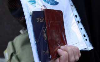 Гражданство РФ для жителей ДНР и ЛНР: получение и оформление в 2020 году