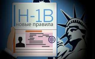 Виза H1B в США: как ее получить в 2020 году