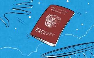 Лишение гражданства РФ в 2020 году: основания по конституции, в каких случаях применяется