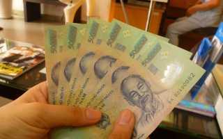 Сколько денег брать с собой во Вьетнам в 2020 году: где снять и обменять доллары на донги в Нячанге и Муйне