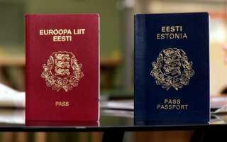Как получить электронное гражданство и паспорт гражданина Эстонии в 2020 году