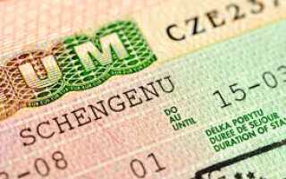 Справка о доходах с места работы и выписка из банка для визы в Чехию в 2020 году