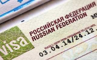 Гуманитарная виза в Россию для иностранцев в 2020 году: порядок получения