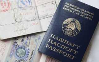 Как получить гражданство Белоруссии гражданину РФ – закон о двойном гражданстве