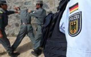 Уровень преступности в Германии в 2019-2020 году