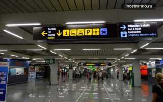 Аэропорт Пальма-Де-Майорка в Испании: как добраться из него до центра города и других населенных пунктов