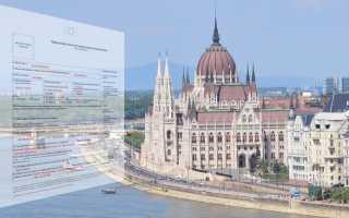 Бланк и образец заполнения анкеты для получения шенгенской визы в 2020 году в формате Word