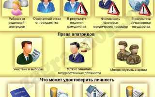 Административно-правовой статус лица без гражданства на территории Российской Федерации в 2020 году