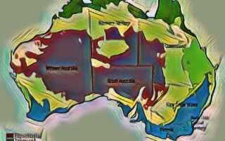Как открыть или купить бизнес в Австралии в 2020 году: иммиграция в эту страну