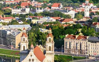 Налоги в Литве для физических и юридических лиц в 2020 году: ставка НДС